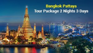 Bangkok Pattaya Tour Package 2 Nights 3 Days